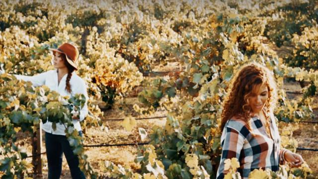 Long-lost sisters break into male-dominated wine business