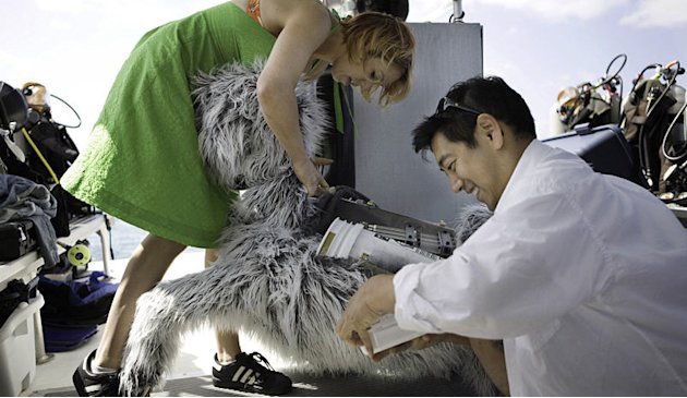 Kari Byron (left) and Grant Imahara unpack RoboDog from its crate and begin to set it up. The MythBusters build team travelled to the Bahamas to test several shark myths, including whether or not dogs