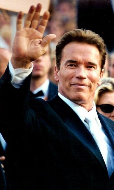 Arnold Schwarzenegger Admits Affair with Brigitte Nielsen: His Other Confessions