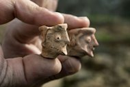 An Israel Antiquities Authority archeologist displays on December 26, 2012 clay figurines used for religious rituals and practices, dated to the early monarchic period (9-10th century. BC) of the Judaean monarchy, uncovered in Tel Motza near Jerusalem during rescue excavations