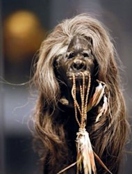 A picture taken at the Quai Branly Museum in Paris, shows a Shrunken head Tsantsa from the Shuar tribe in Equator (19th century) displayed during the exhibition &quot;Cheveux Cheris&quot;. The head is made with human tissue, hair, vegetal fiber and feathers
