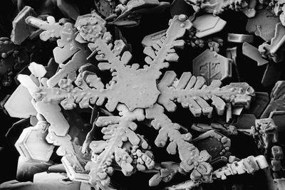 Snowflakes look radically different under an electron microscope