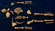 The bones of a Roman toddler from the Casal Bertone Mausoleum suggest that the 18-month old was in the process of weaning when he or she died.