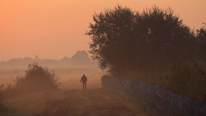 A Hungarian police officer patrols at the Hungarian border with Serbia, at early morning near Roszke