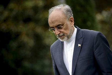 The Head of the Iranian Atomic Energy Organization Ali Akbar Salehi walks through a garden at the Beau Rivage Palace Hotel during an extended round of talks in Lausanne