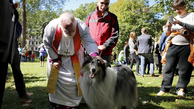 Owners bring their animals to be blessed by Andrew Dietsche, Bishop of New York at the 31st annual Feast of Saint Francis and Blessing of the Animals at The Cathedral of St. John the Divine in the Manhattan borough of New York