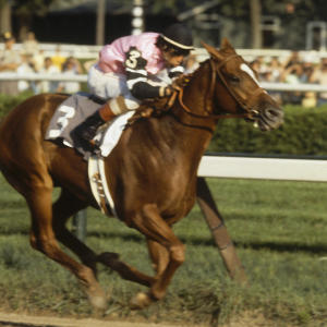Will there ever be another Triple Crown winner?