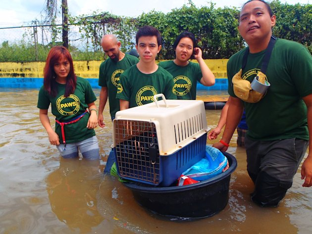 PAWS-volunteers-Faith-Calaguas--Joe-Claret--Vince-Harn--John-Tangkeko-and-PALS--Donna-set-out-to-Karangalan-in-Cainta--Rizal-to-jpg_085535 - About THE PHILIPPINE ANIMAL WELFARE SOCIETY - Directory Philippines