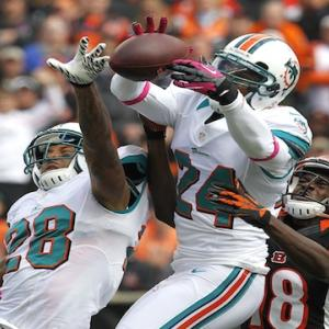 Cincinnati Bengals vs. Miami Dolphins - Head-to-Head