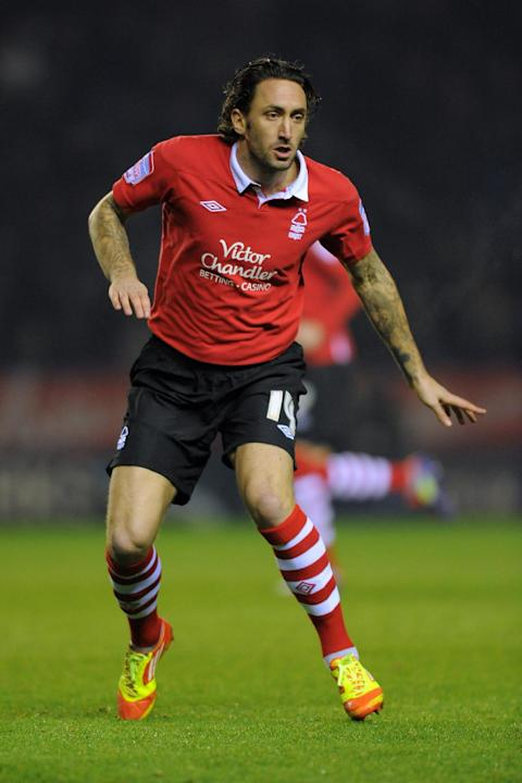 Jonathan Greening, pictured, could still have a future at Nottingham Forest