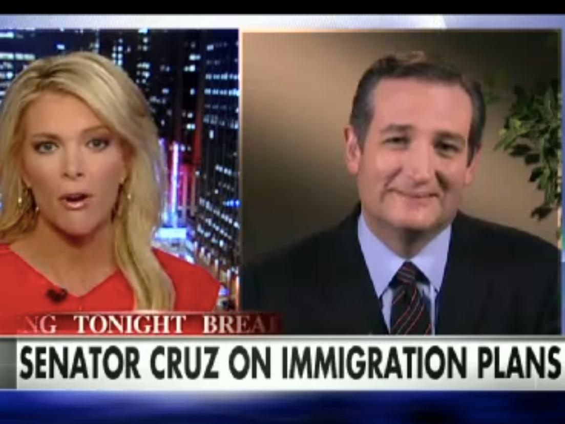 Megyn Kelly accuses Ted Cruz of dodging her question as he fires back at 'mainstream-media liberal' agenda