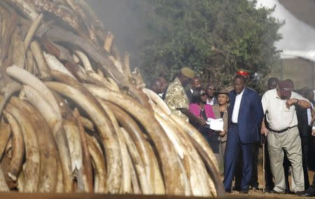 Kenya burns 15 tonnes of ivory in anti-poaching fight, to destroy its stockpile by year-end