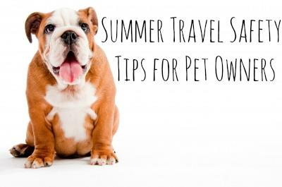Summer Travel Safety Tips for Pet Owners