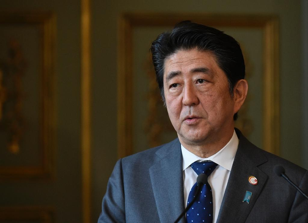 Japanese PM hopes for peace progress with Putin