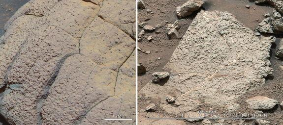 Could Life Have Evolved on Mars Before Earth?
