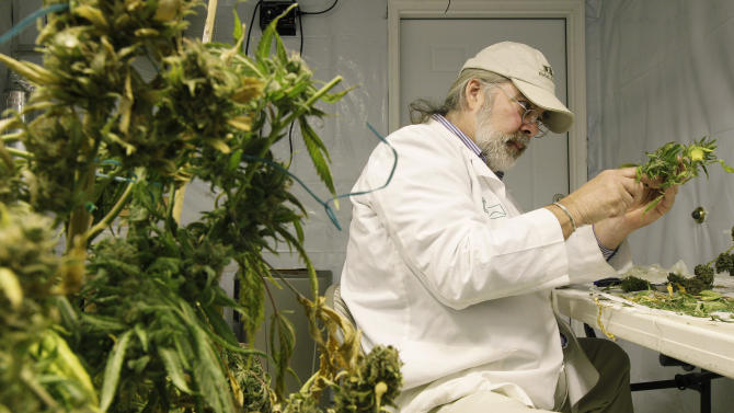 Jake Dimmock, co-owner of the Northwest Patient Resource Center medical marijuana dispensary, prepares medical marijuana for distribution to patients, Wednesday, Oct. 10, 2012, in Seattle. Washington state is on the verge of becoming the first in the nation to let adults over 21 buy taxed, inspected marijuana at state-licensed shops. Supporters of Initiative 502 say allowing recreational pot sales could make drug laws a little more reasonable, prevent thousands of arrests a year, and bring Washington hundreds of millions of dollars to help pay for schools, health care and basic government services. (AP Photo/Ted S. Warren)