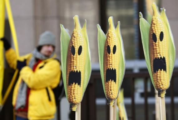 Corn_GMO_Genetically_Modified_Halloween_Reuters.jpg