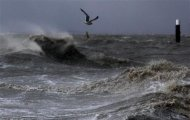 A seagull flies over the North Sea near the town of Emden, December 6, 2013. REUTERS/Ina Fassbender