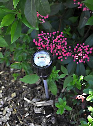 This undated image shows a soil moisture testor in a garden. A reliable way to tell whether any plant needs water is to dig a hole near it and feel the soil for moisture. Instead of pocking your garden full of test holes, you could instead periodically check for wetness by probing it with an (inexpensive) electronic moisture meter. (AP Photo/Lee Reich)