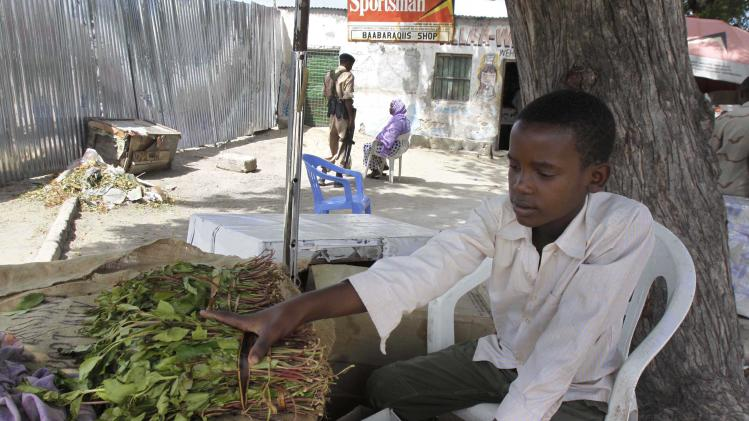 UK government to ban herbal stimulant khat