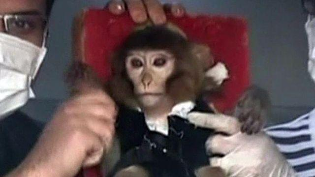 Iran claims it safely sent a monkey into space, back