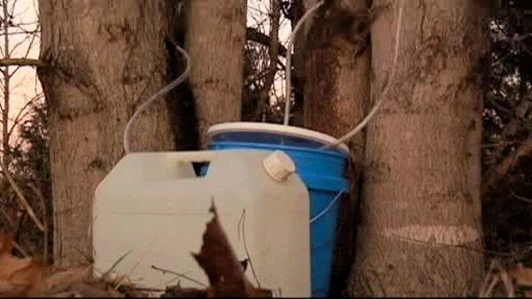 Drug agents raid home for meth, find maple syrup
