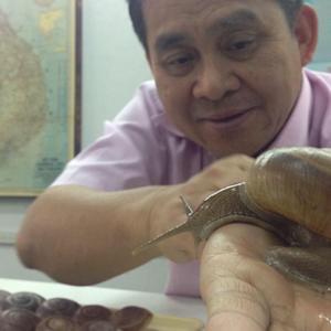 Why Are Snails Trending in Asia?