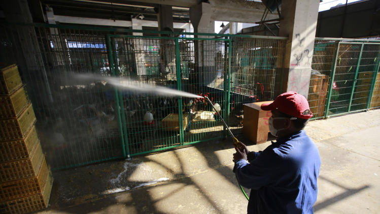 China: 4 more rare bird flu cases, new steps taken