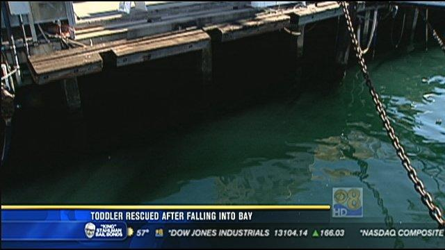 Toddler rescued after falling into bay