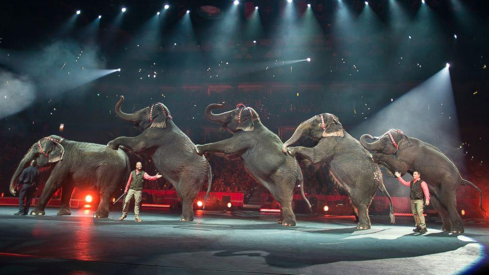 What Ringling Bros. Circus Will Be Like Without Elephants