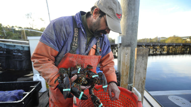 Conn. lobstermen coping with 1st seasonal closure