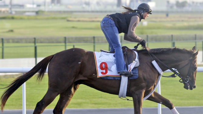 Racing horse Fly Down from U.S. practices during a morning session two days ahead of the Dubai World Cup, the world's richest horse race at the Meydan in Dubai, United Arab Emirates, Thursday March 24, 2011. (AP Photo/Kamran Jebreili)