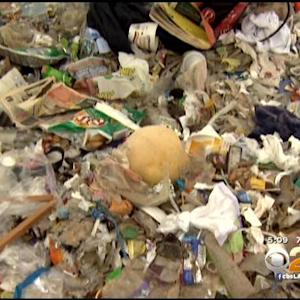 Volunteers Help Clean Up Dockweiler Beach