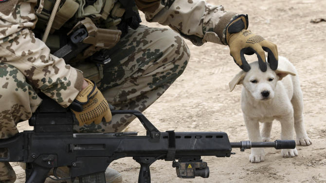 German Bundeswehr army soldier with Delta platoon of 2nd paratroop company 373 strokes dog on its head during mission in Iman Sahib