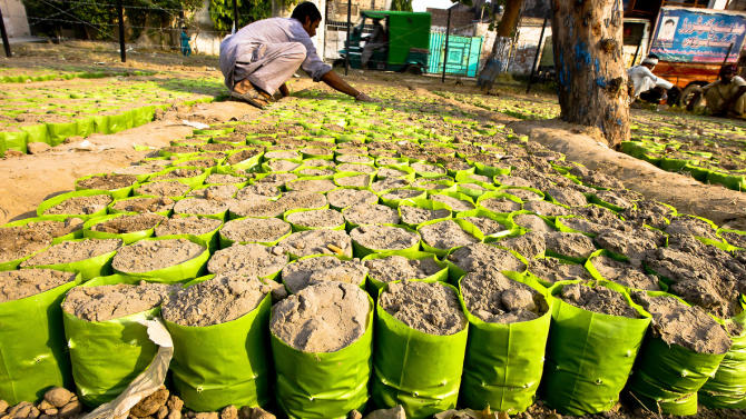 A gardener prepares sand for saplings plantation at a nursery in Lahore, Pakistan, October 22, 2014. (EPA/OMER SALEEM)