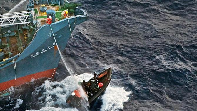 Sea Shepherd to Pay Millions to Whale Killers