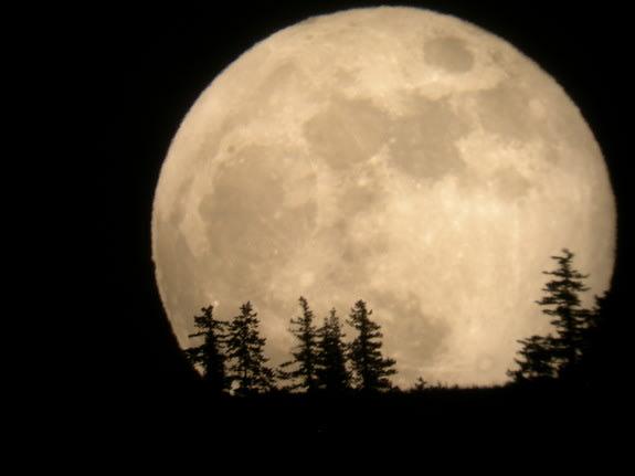 صور طبيعية لقرب القمر من الارض 2013 - اجمل صور اكتمال القمر 2013 supermoon-may-2012-tim-mccord.jpg1336303505