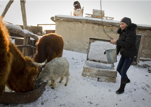 Makpal Abrazakova draws a bucket of water for her family's livestock in Aksu-Ayuly, central Kazakhstan