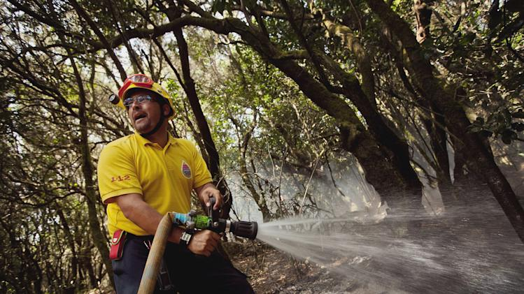 A firefighter works to halt the spread of wildfires in the Garajonay National Park, La Gomera, Spain, Sunday, Aug. 12, 2012.  Wildfires spurred by high temperatures raged across Spain's Canary Islands of La Gomera and Tenerife as well as Ourense in northwestern Spain. Flames are threatening some of Europe's oldest surviving forests in the Garajonay National Park in La Gomera and have forced the evacuation of hundreds of people across the country. (AP Photo/Andres Gutierrez)
