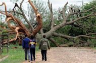 Deadly storms hit South America