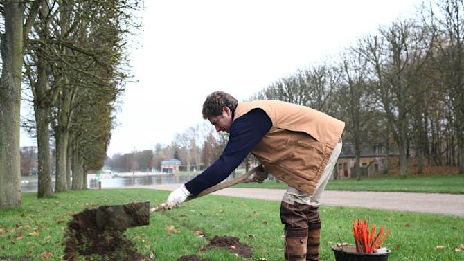 "Molecatcher Jerome Dormion uses a shovel in the park of the Chateau de Versailles, west of Paris, Thursday, Nov. 22, 2012. The king is dead, but the molecatcher lives on. He even signs SMS messages: ""Molecatcher to the king."" It's been over two centuries since Louis XVI was guillotined on Paris' Place de la Concorde, but the job of hunting the underground rodent that so troubled French monarchs on the grounds of the Versailles palace still exists. (AP Photo/Thibault Camus)"