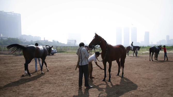 A groom cleans his horse as others wait after working out on the track, during early morning workouts for the upcoming Derby race in Mumbai