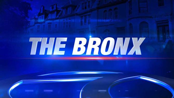 2-month-old hit in head with baseball bat as parents attacked on Bronx street