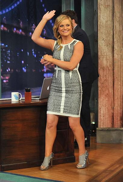 Nominee: Amy Poehler for Best Performance by an Actress in a Television Series – Comedy or Musical