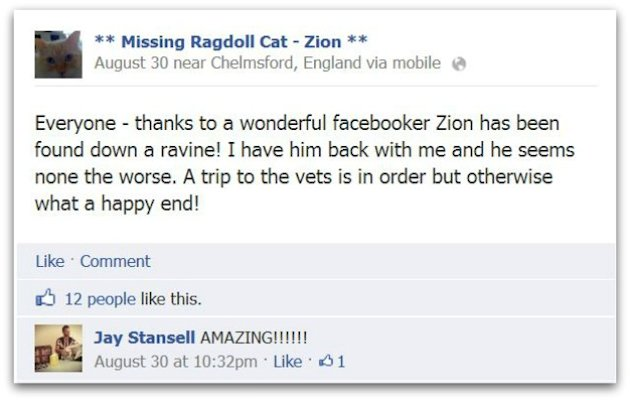 Facebook Ad Reunites Man With His Cat