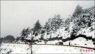 裝雪鏈被剝皮 賞雪遊客受氣