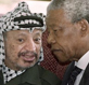 Mandela in the Arab world