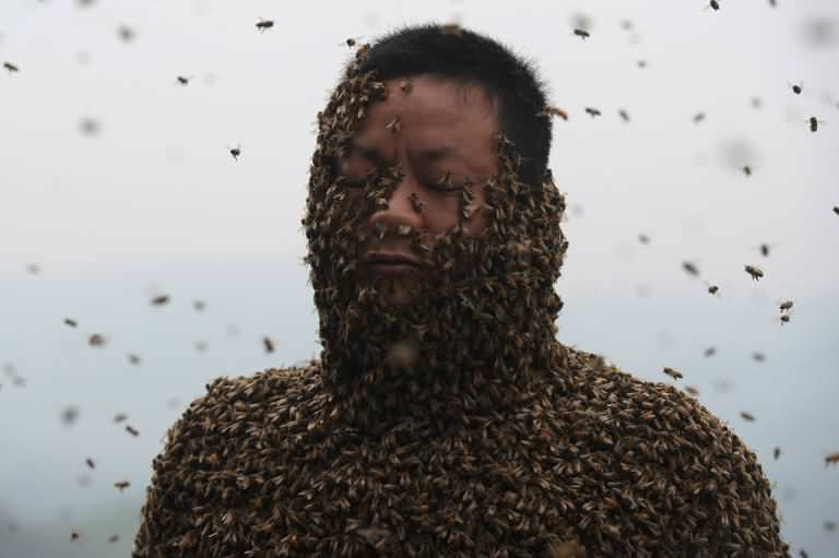 She Ping covered with a swarm of bees in southwest China (AFP)