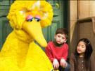 Big Bird and children
