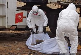 The body of a man found in the street, suspected of dying from the ebola virus is covered and removed by health workers, in the capital city of Monrovia, Liberia, Tuesday, Aug. 12, 2014. (AP Photo/Abbas Dulleh)